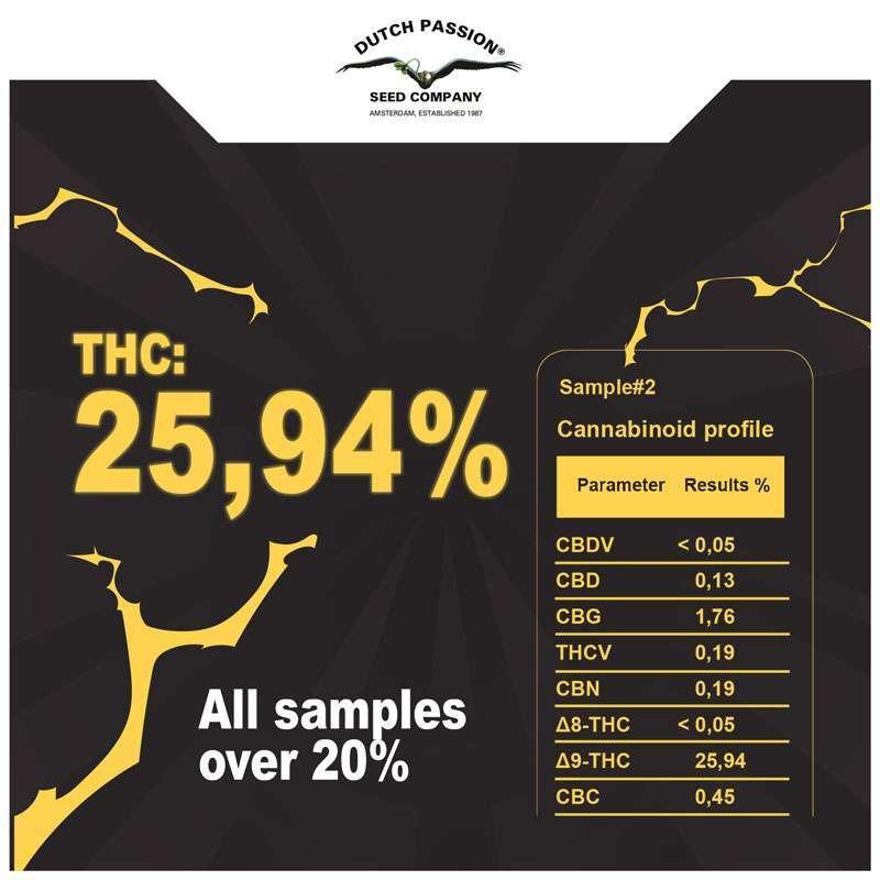 -    Jeden vzorek byl těsně pod hranicí 26 procent THC!