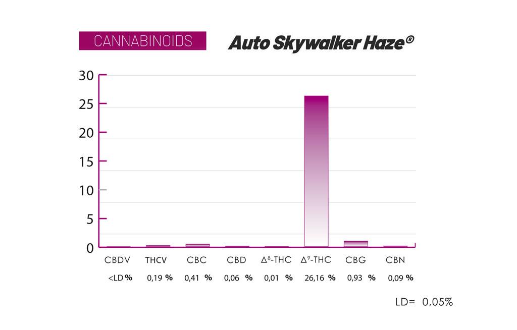 Auto Skywalker Haze cannabinoids and terpenes