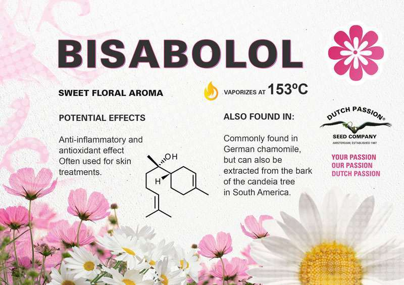 Bisabolol