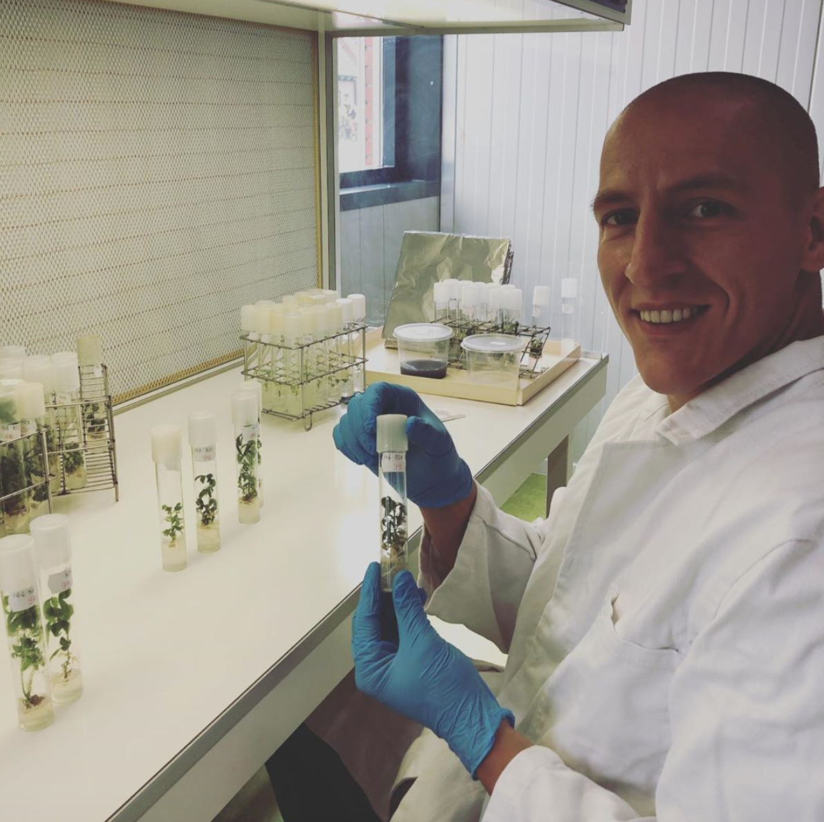 Mahmoud, Dutch Passion Head of Genetics with some tissue culture cannabis projects
