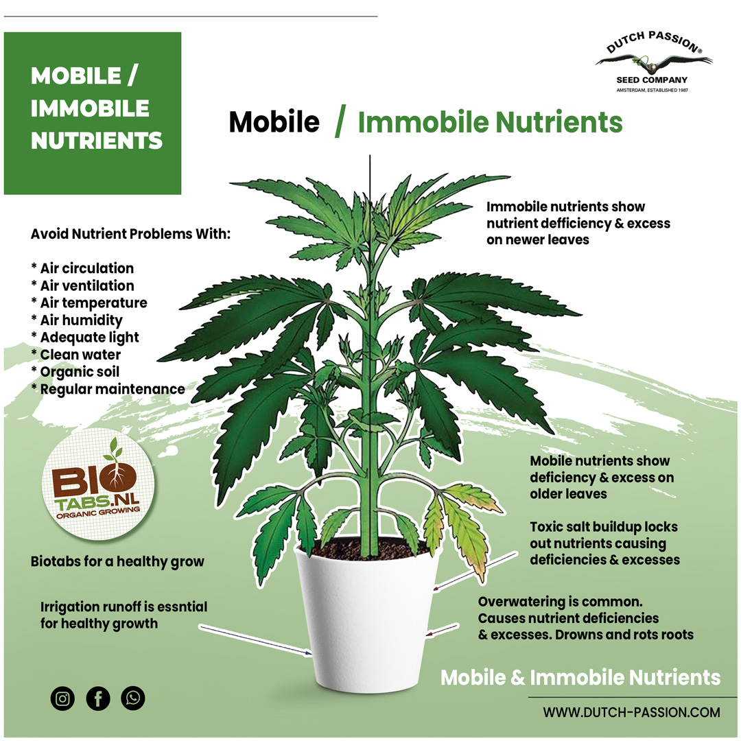 Mobile and immobile nutrients