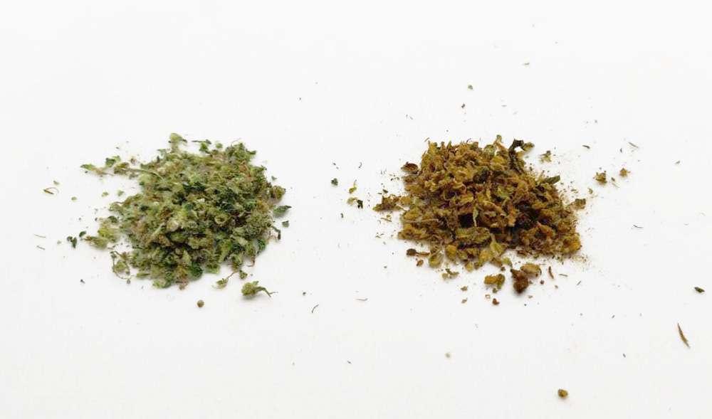 Weed vs already vaped weed