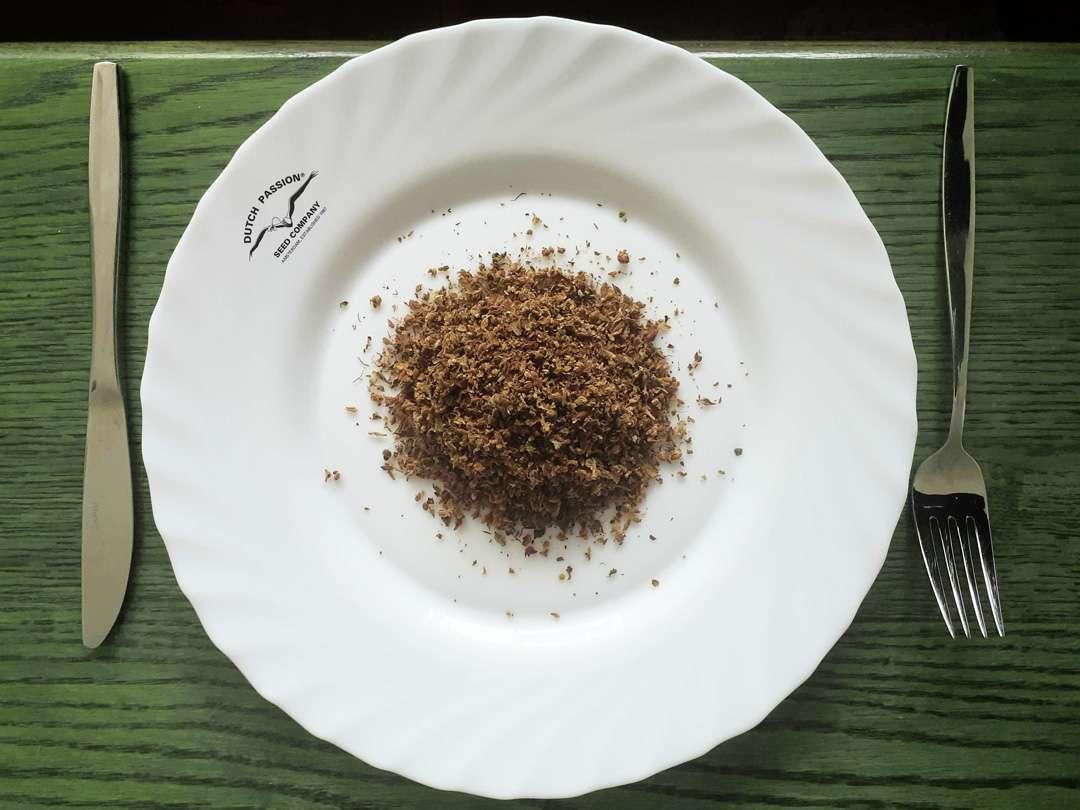 AVB soup plate 3