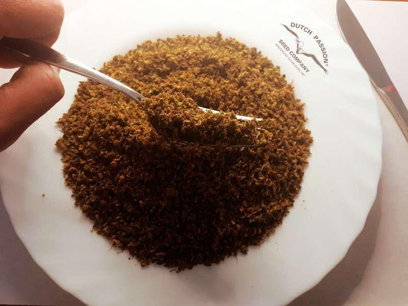 AVB soup plate 2