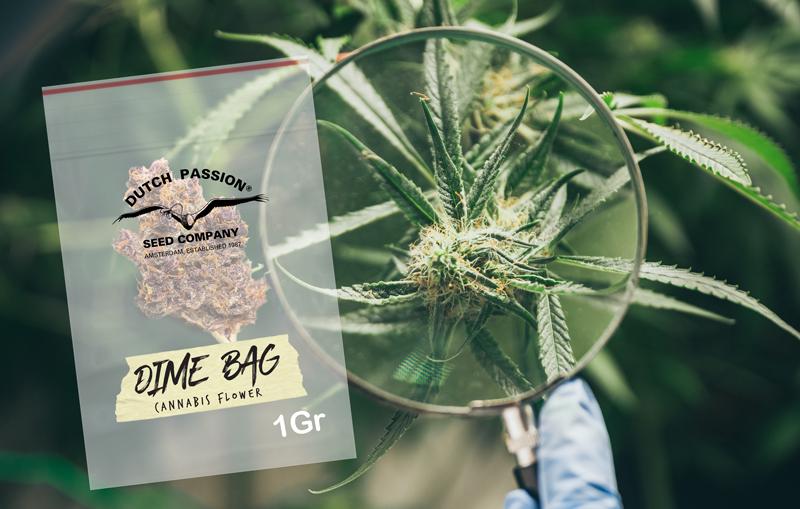 Dime bag - 1 gram of weed