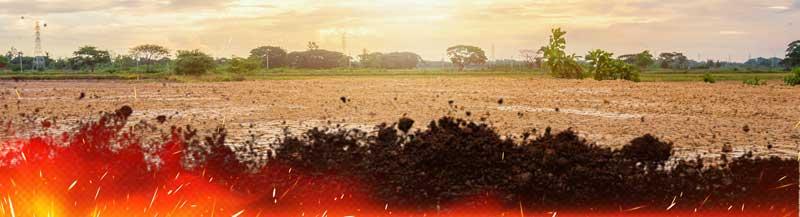 Overheated soil when growing cannabis