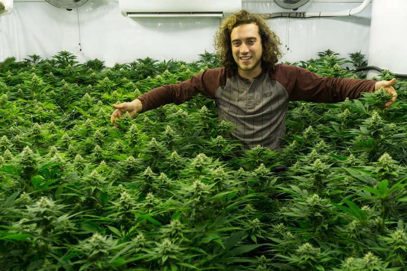 Kees from Super Sativa Seed Club