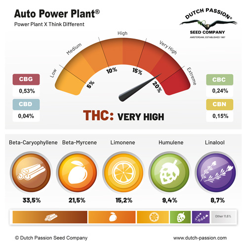 Auto Power Plant terpenes and cannabinoids