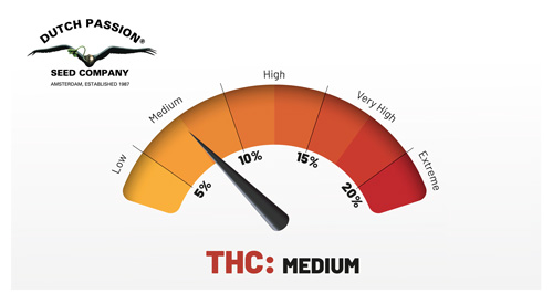 medium thc rating outdoor duck