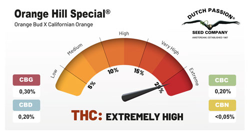 Orange Hill Special cannabinoids