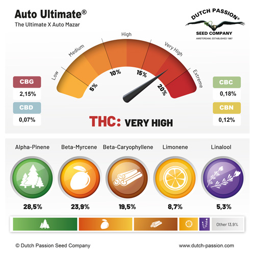 Auto Ultimate cannabinoids and terpenes