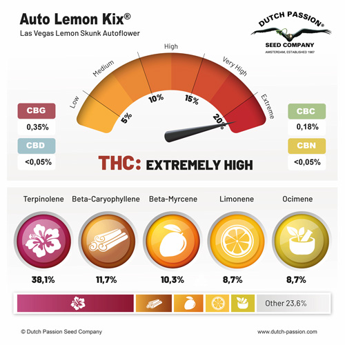 Auto Lemon Kix terpene and cannabinoid profile
