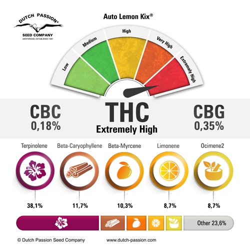 auto-lemon-kix-terpenes-and-cannabinoids-dutch-passion-cannabis-seed-company.jpg