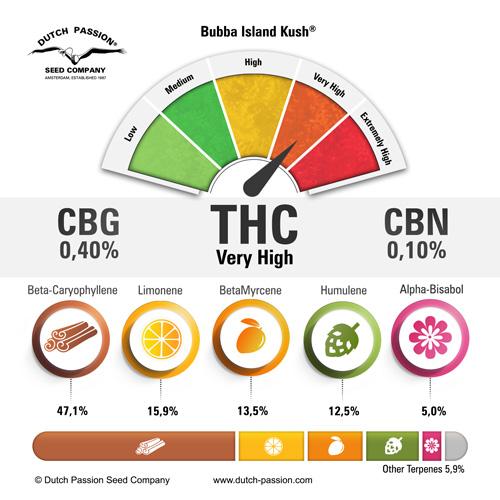 bubba-island-kush-terpenes-and-cannabinoids-dutch-passion-cannabis-seed-company_1.jpg