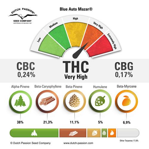 cannabinoids-en-terpenen-terpenes-blue-auto-mazar-cannabis%20(1).jpg