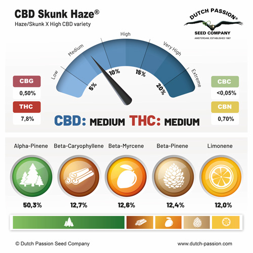 CBD Skunk Haze terpenes and cannabinoids