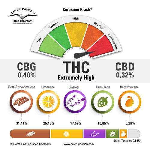kerosene-krash-terpenes-and-cannabinoids-dutch-passion-cannabis-seed-company_1.jpg