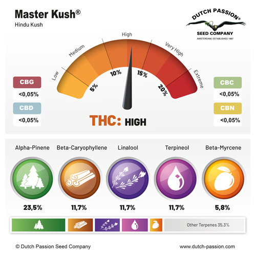 Master Kush terpenes and cannabinoids