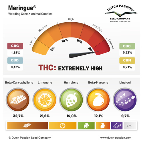 Meringue cannabinoids and terpenes