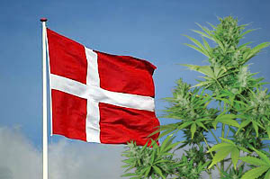 Denmark: Over 50% of Danish citizens are favouring the legalisation of marijuana