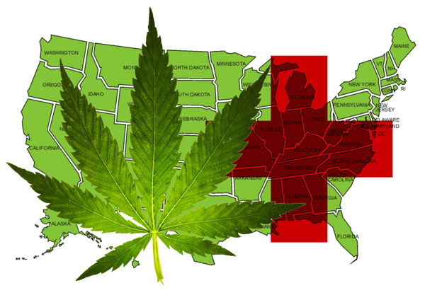 USA: Good chances for med pot legalisation initiatives in two more states