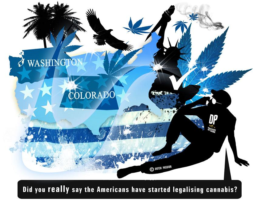 USA starts to legalise cannabis.  The beginning of the end for prohibition?