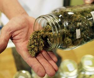 Jamaica: Legalise ganja to help cancer and HIV sufferers says leading Doctor
