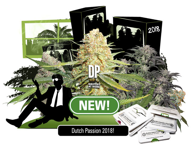 New Dutch Passion feminized seeds for 2018. CBD rich and THC rich feminized seeds.