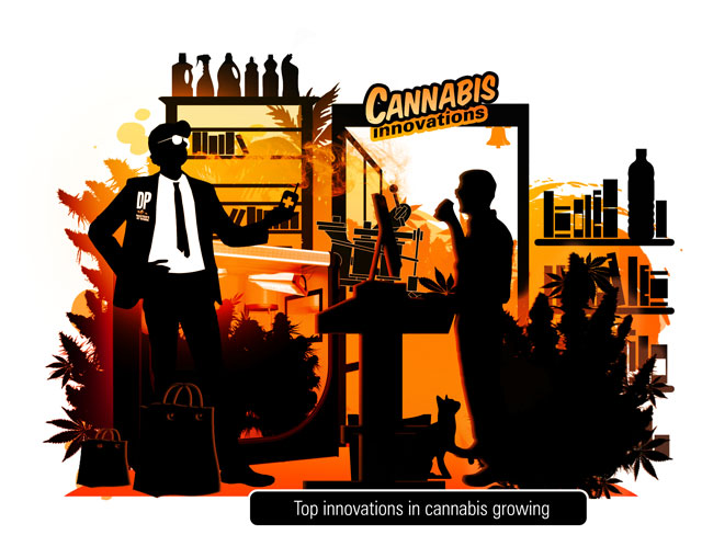 Principales innovations en graines de cannabis et dans le monde de la culture | Dutch Passion