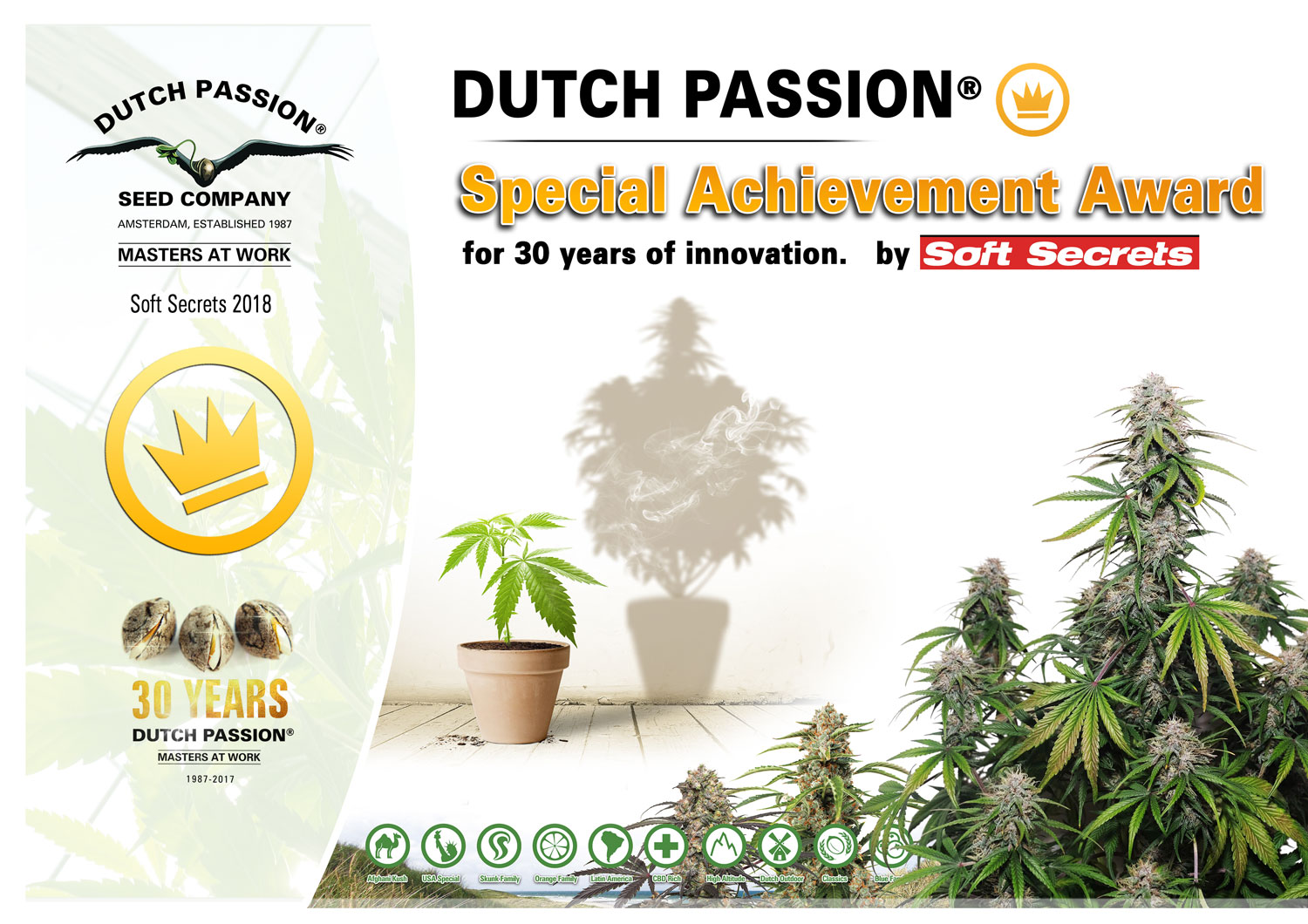 Dutch Passion celebrate two cannabis cups.
