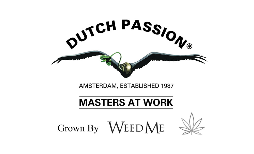 Dutch Passion announce partnership with Canadian cannabis producer Weed Me.