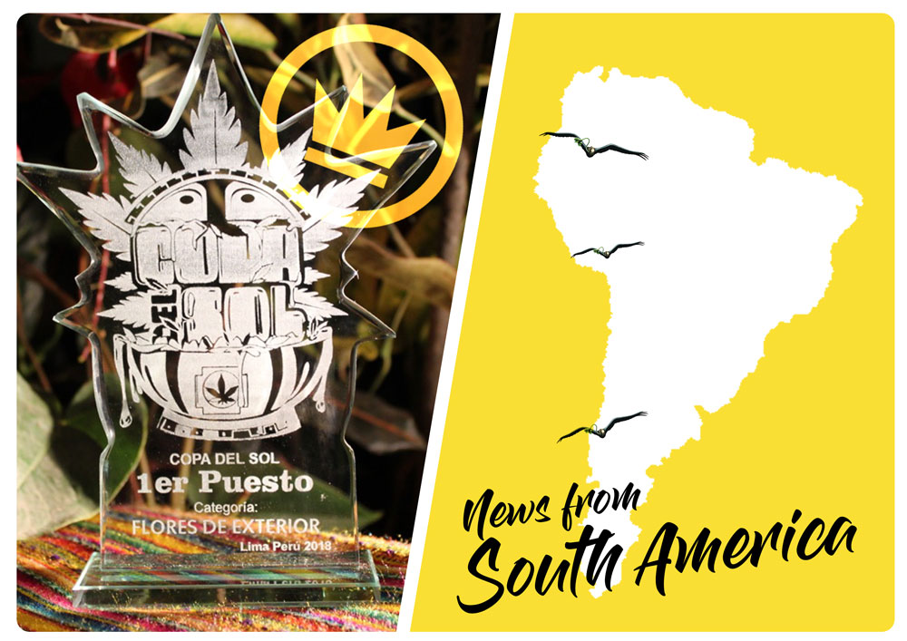 Dutch Passion Success in South America and Cannabis Cup victories in Peru