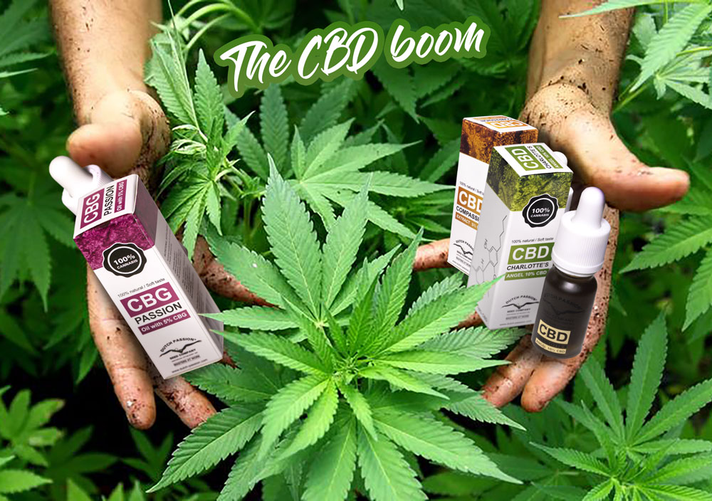 The CBD Boom: what you need to know about it