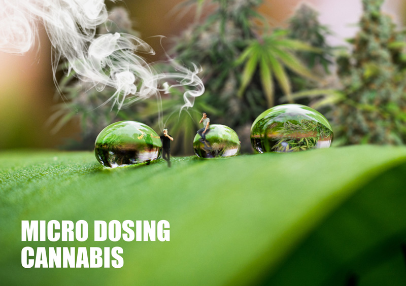 Micro dosing cannabis. What is it and how does it work?