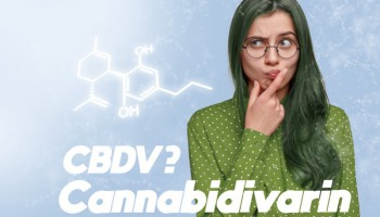 CBDV: What does this non-psychoactive cannabinoid do?