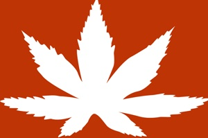 Austria: Austrian soldier with positive THC tests exculpated by court