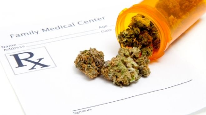 USA.  Medical marijuana prescribed by doctors to 7-year old girl