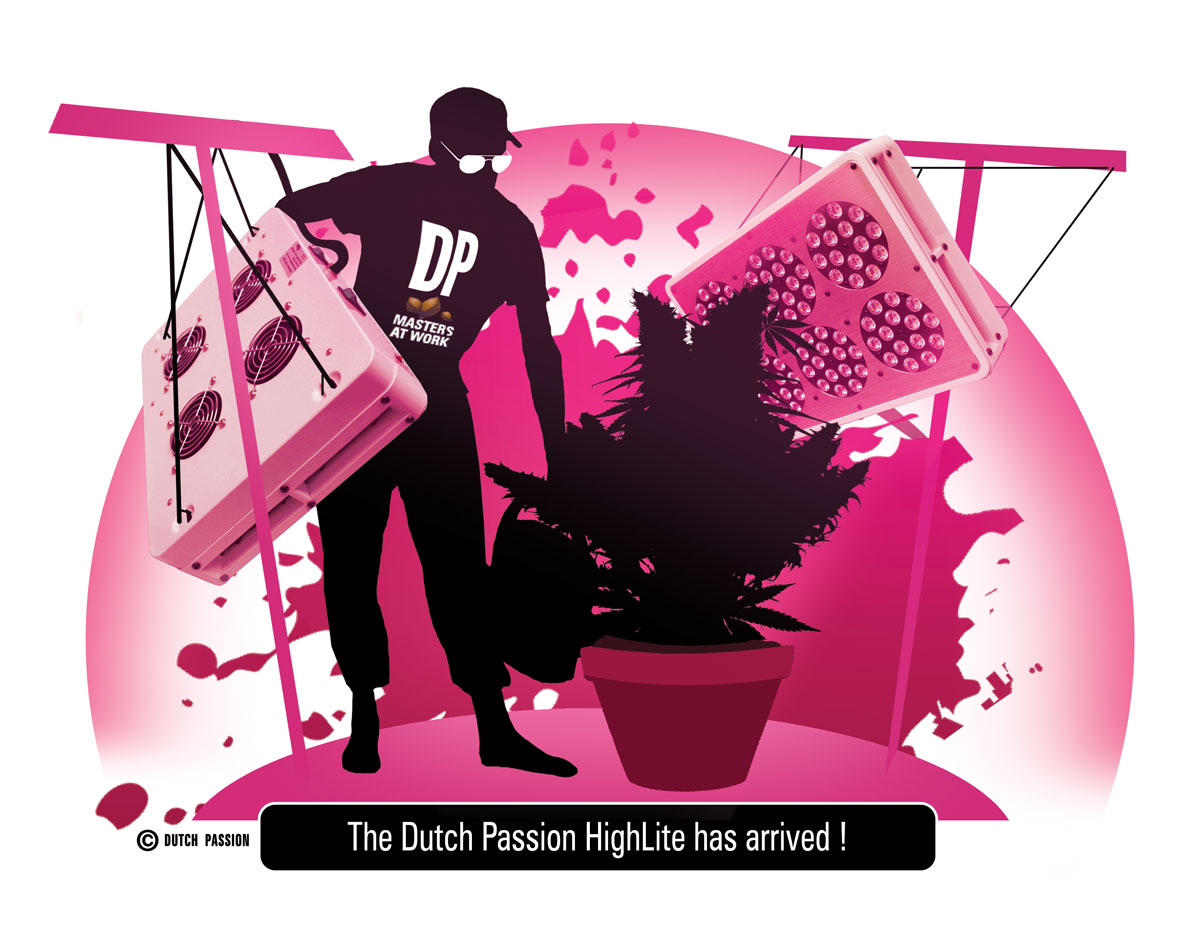 Dutch Passion LED Grow-lights arrive