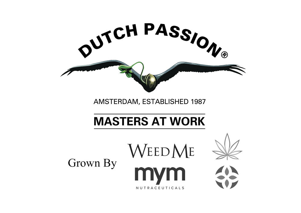 Dutch Passion announce new partnerships in Canadian, Colombian and Australian me