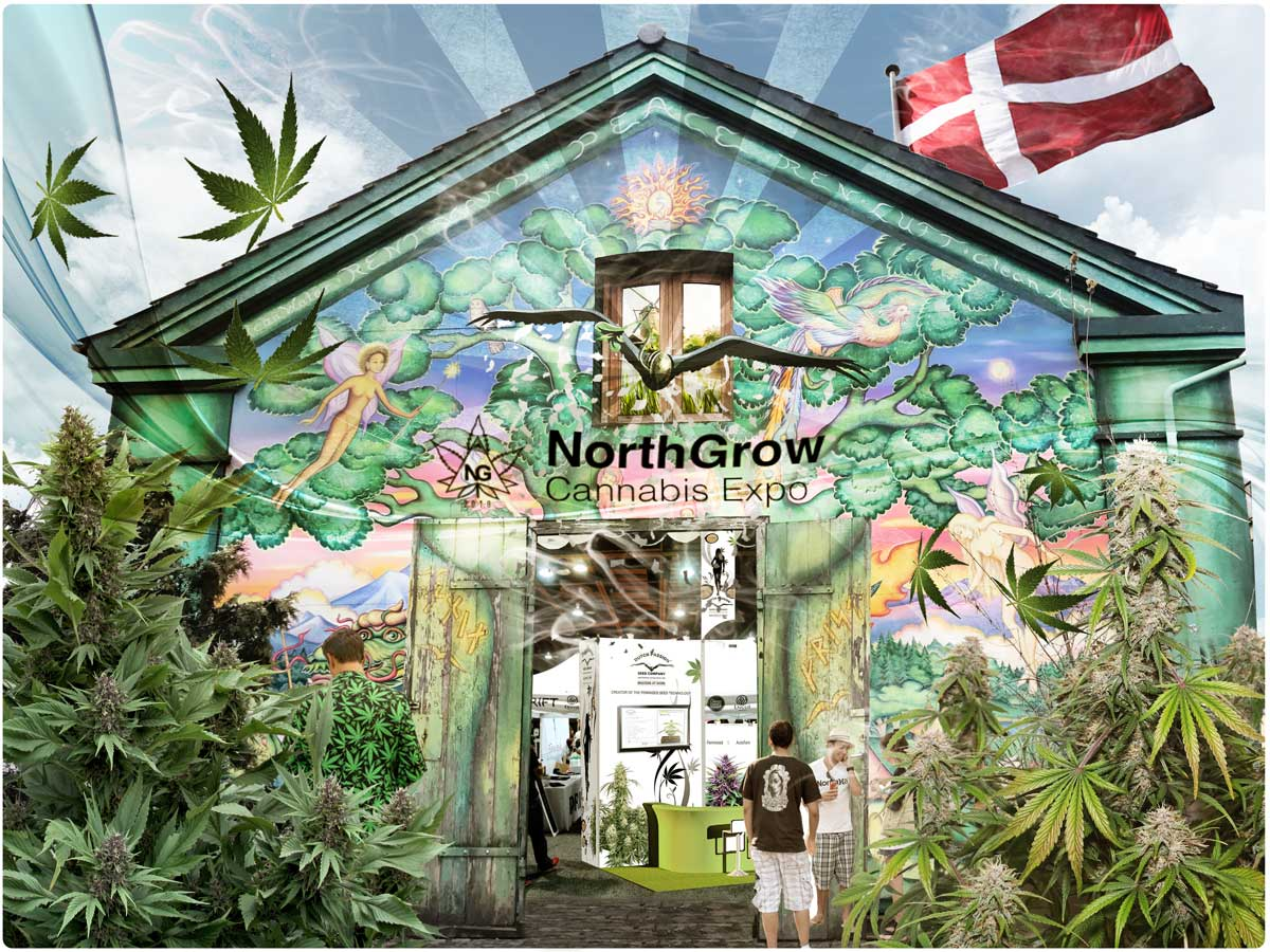 Dutch Passion at North Grow in Denmark. One of the biggest cannabis expo in Scan