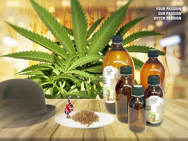 UK finally agrees to legalize medical cannabis