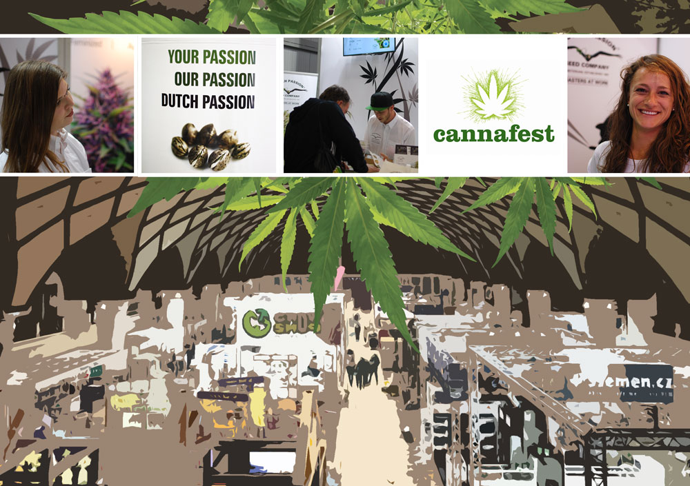 Cannafest. Dutch Passion review Prague's major cannabis expo