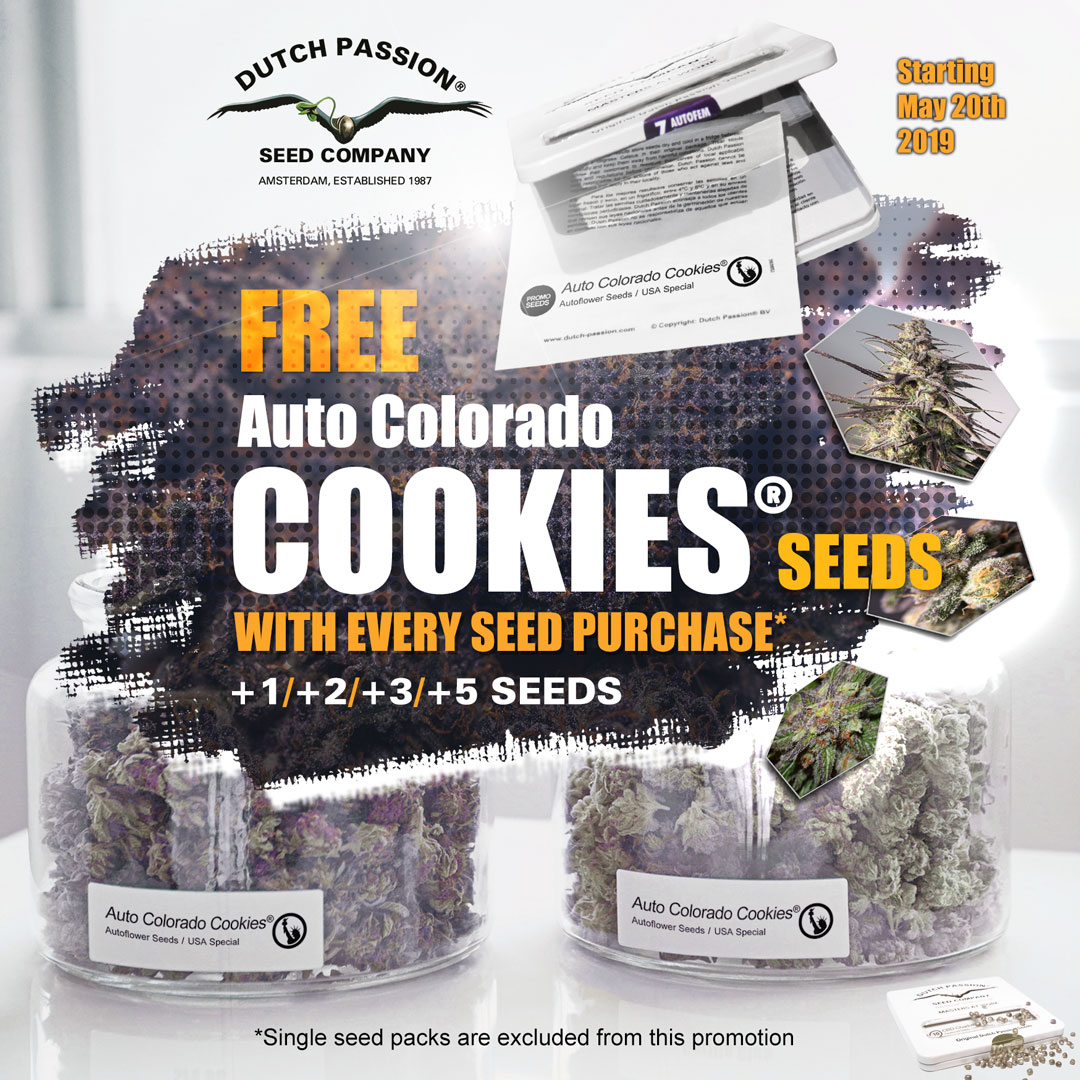 Graines d'Auto Colorado Cookies gratuites