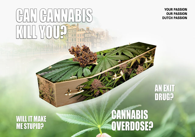 Cannabis can't kill you. You can't die directly from cannabis.