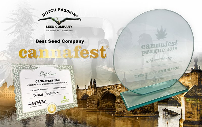Dutch Passion awarded 'Best Seedbank' at Cannafest 2019, Prague